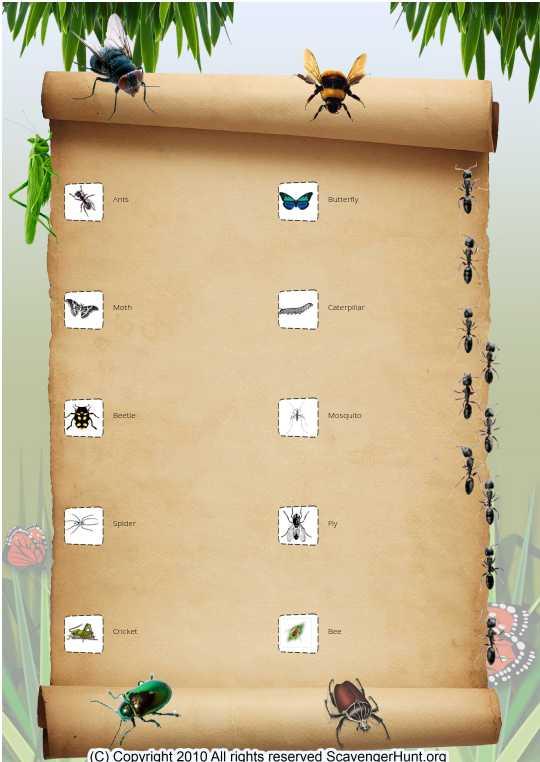Girl Scout Bug Hunt 2015